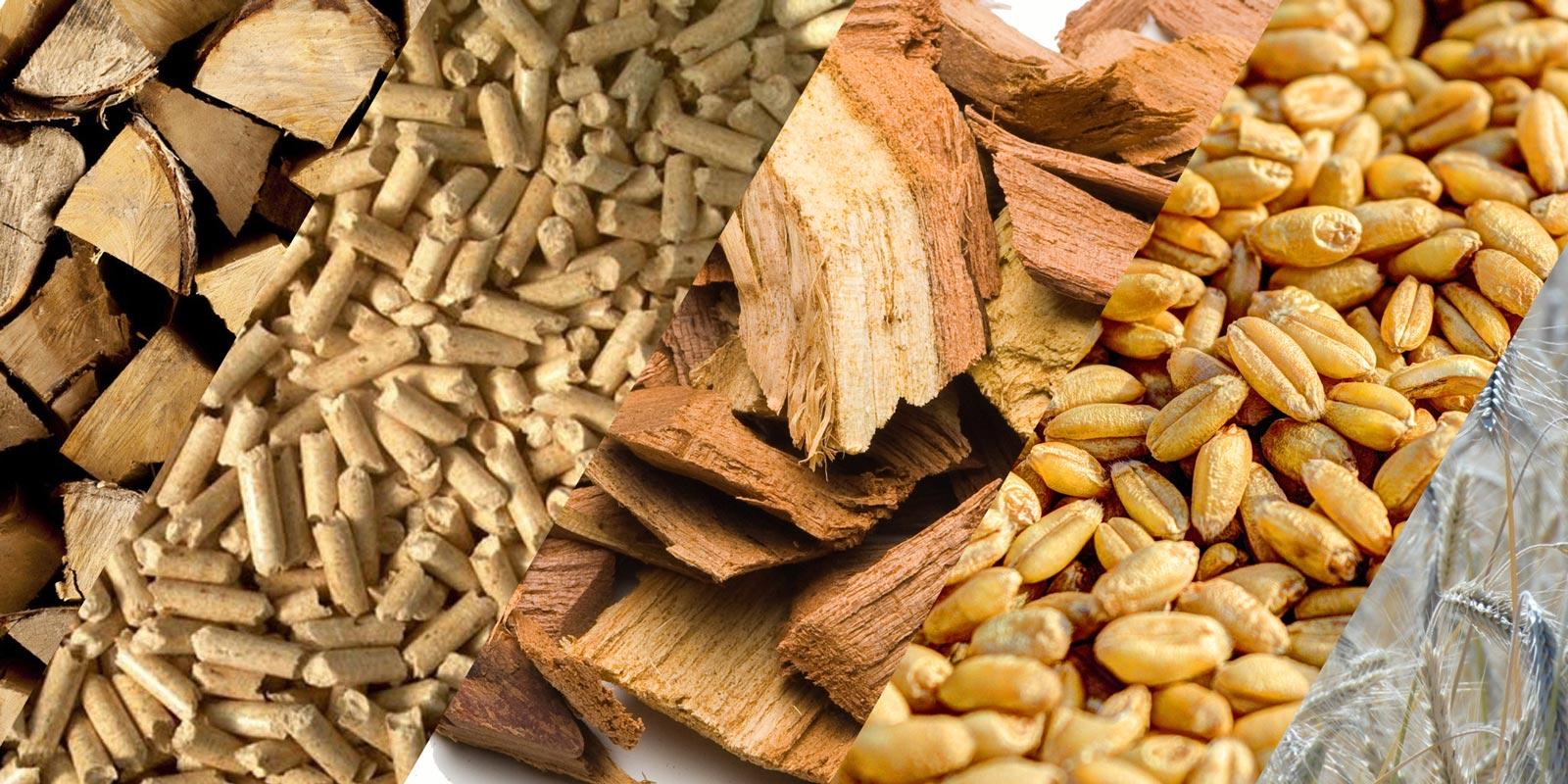 Biomass fuel information and procurement | Treco